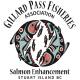 Gillard-Pass-Logo